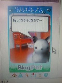 ...なぬ(^0^;!?